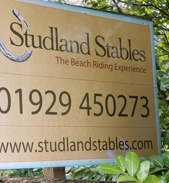 Studland Stables